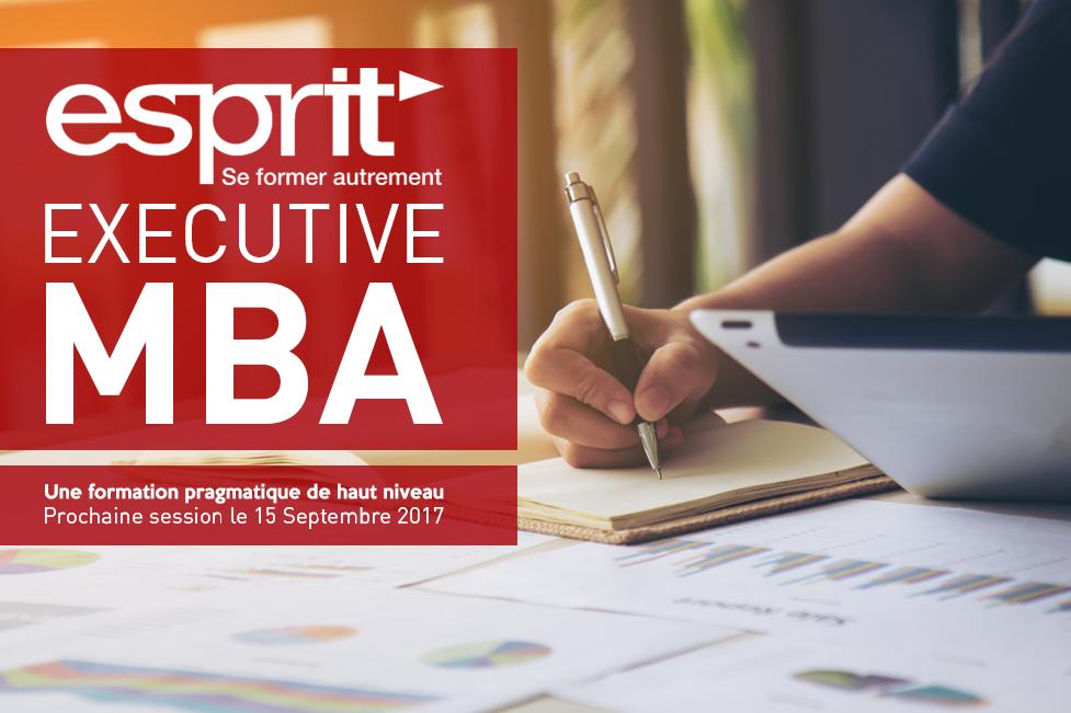 L'EMBA ESPRIT est au service des managers, cadres dirigeants et porteurs de projets afin d'explorer l'innovation managériale dans le monde digital et développer leurs aptitudes de leadership.
