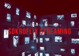 Sokroflix Streaming : 21 Meilleures Alternatives pour regarder des Films et Séries (édition 2020)