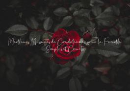 Liste : 45 Meilleurs Messages de Condoléances pour la Famille Simples et Courts