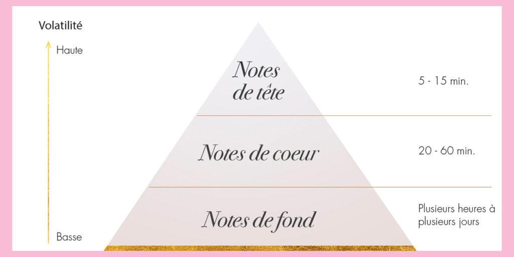 Quelles sont les notes d'un parfum ?
