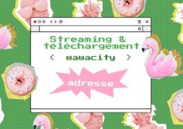 Wawacity : Voici la Nouvelle Adresse Streaming et Téléchargement gratuit à jour et qui marche